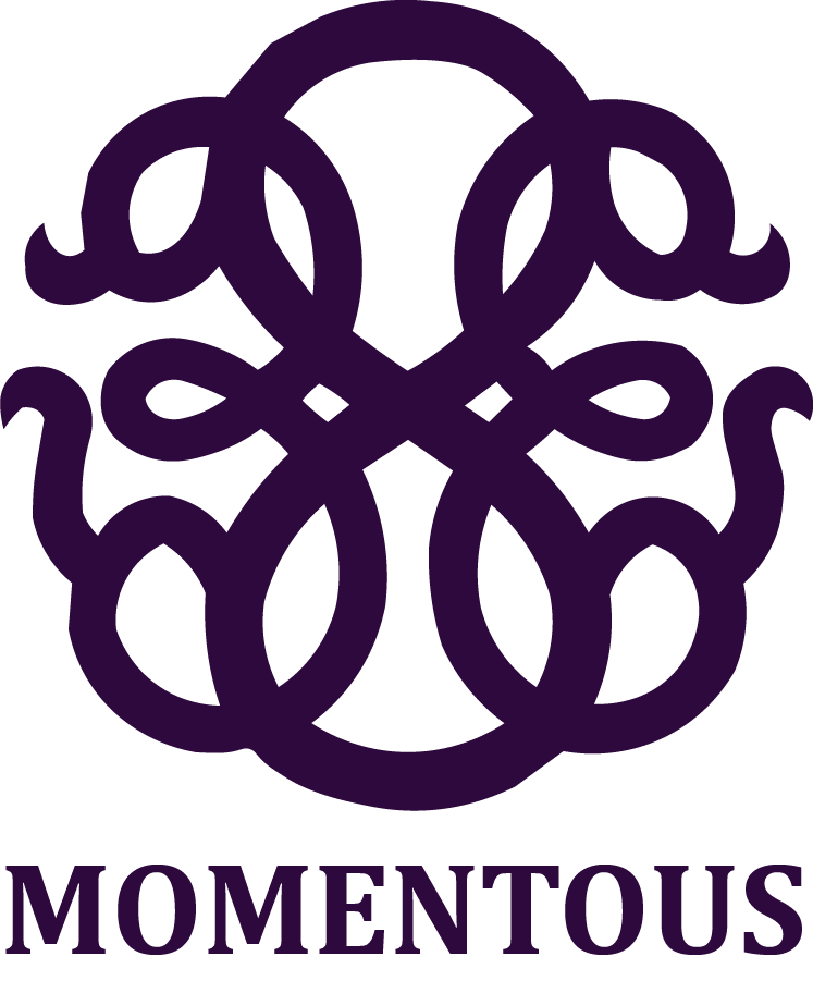 MOMENTOUS REALTY | An Invested Approach| Micki Esposito | Luxury Realtor